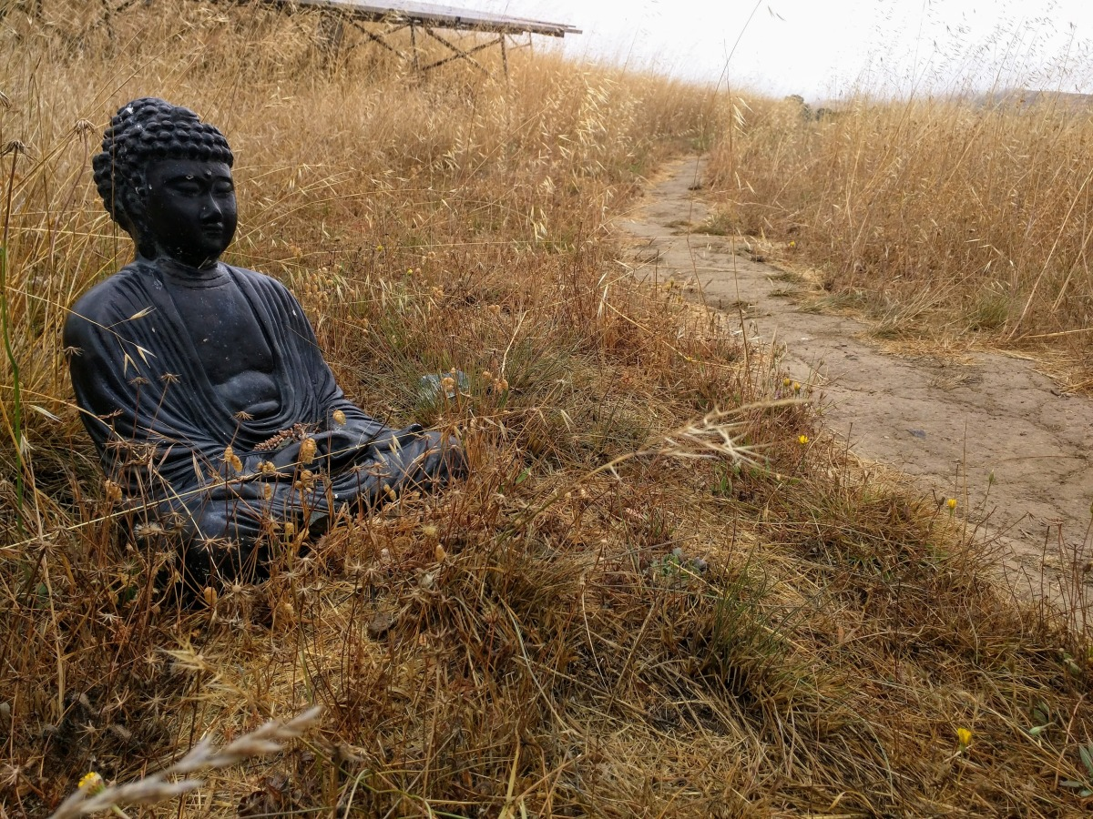 mindfulness-buddhism-konmari-marie-kondo-debt-repayment